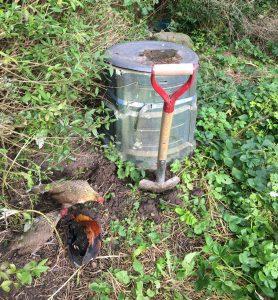 Bokashi i kompostform