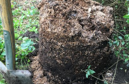 Bokashi i kompostform del 2